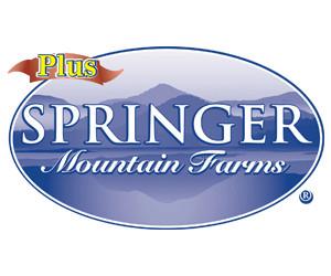 Springer Plus
